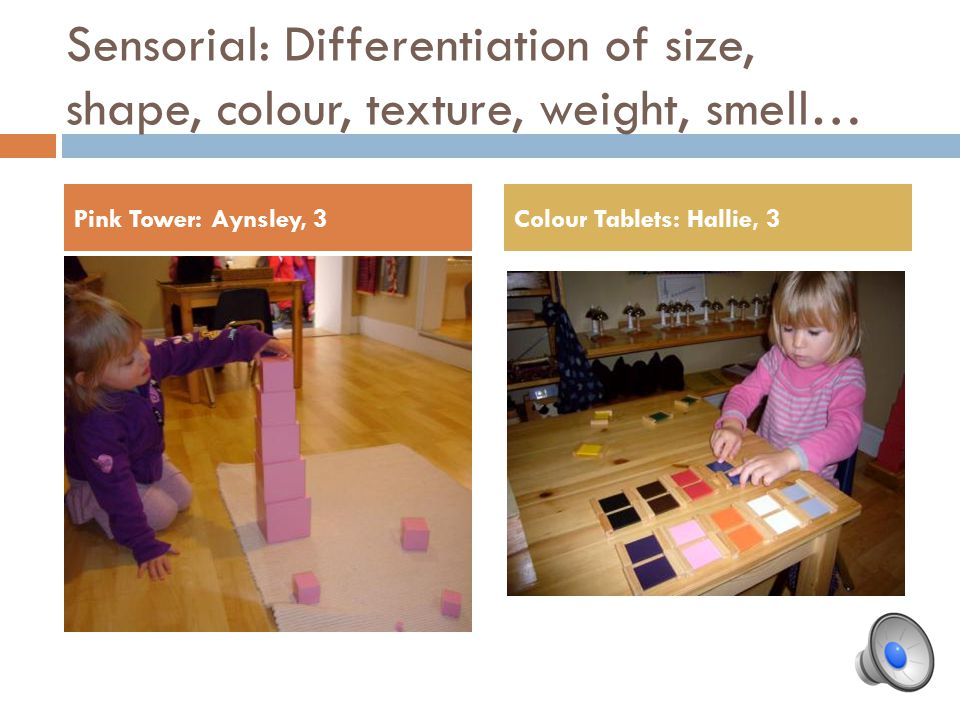 Sensorial: Differentiation of size, shape, colour, texture, weight, smell…