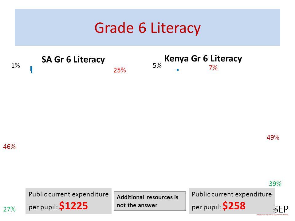 Grade 6 Literacy SA Gr 6 Literacy Kenya Gr 6 Literacy 1% 5% 7% 25% 49%