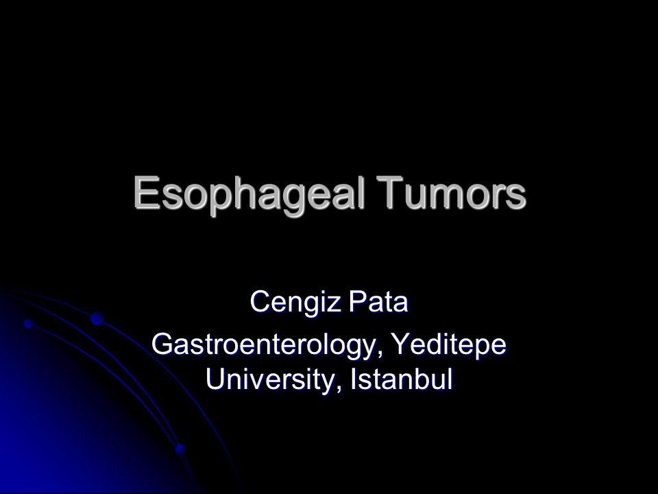 Cengiz Pata Gastroenterology, Yeditepe University, Istanbul