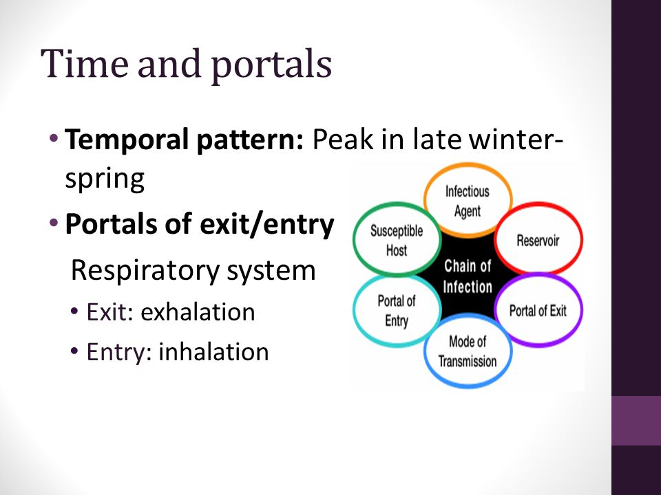 Time and portals Temporal pattern: Peak in late winter-spring