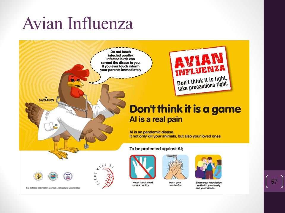 Module 2: ABCs of Influenza and Pandemics