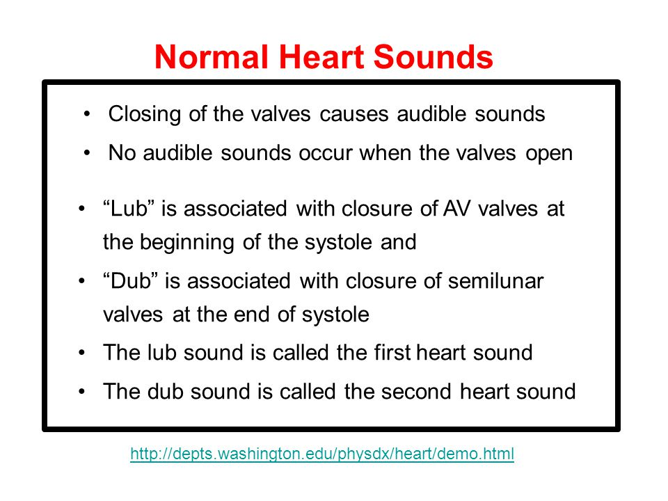 Normal Heart Sounds Closing of the valves causes audible sounds