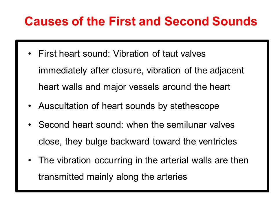 Causes of the First and Second Sounds