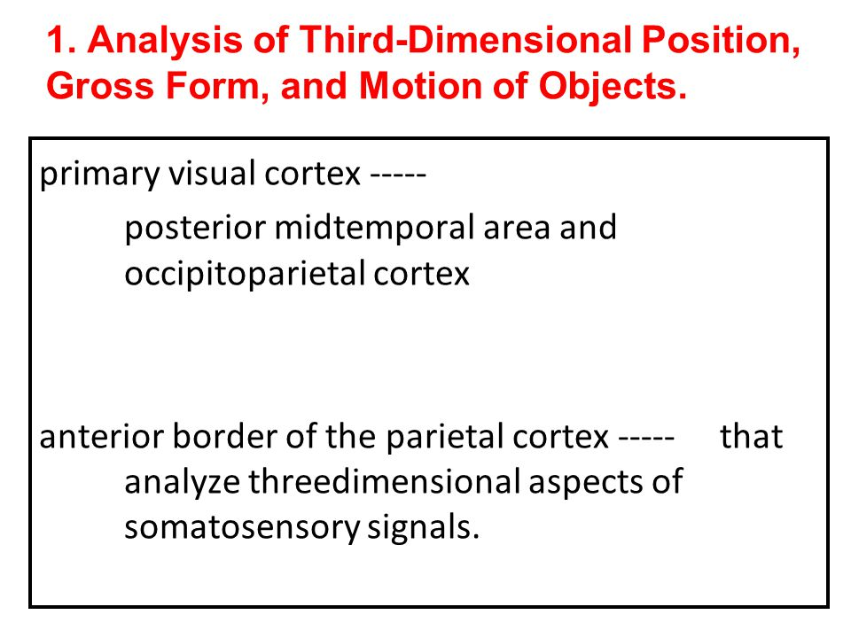 1. Analysis of Third-Dimensional Position, Gross Form, and Motion of Objects.