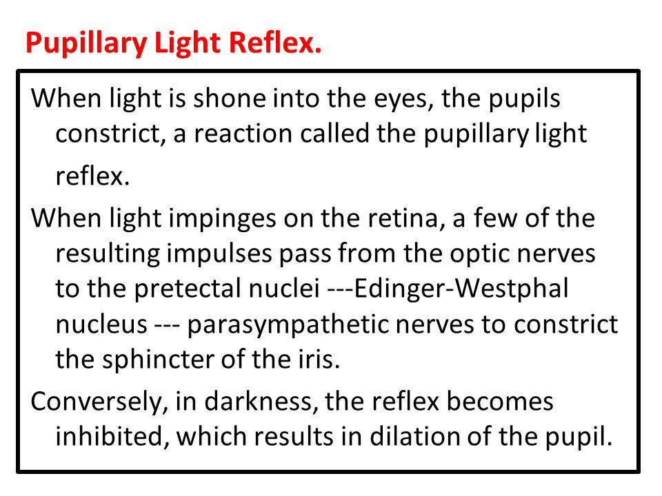 Pupillary Light Reflex.