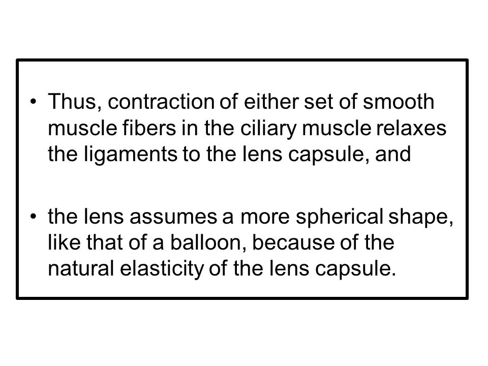 Thus, contraction of either set of smooth muscle fibers in the ciliary muscle relaxes the ligaments to the lens capsule, and