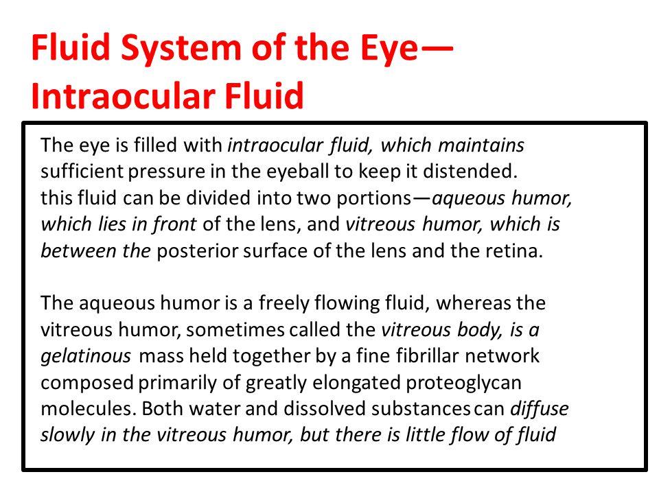 Fluid System of the Eye— Intraocular Fluid