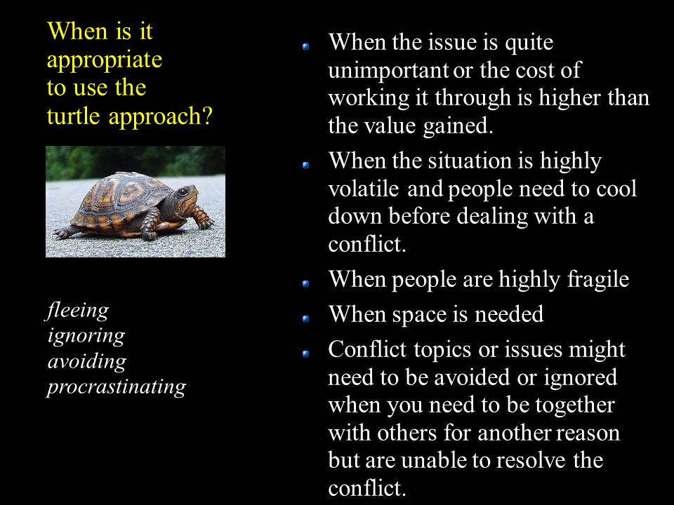 When is it appropriate to use the turtle approach