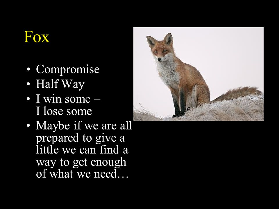 Fox Compromise Half Way I win some – I lose some
