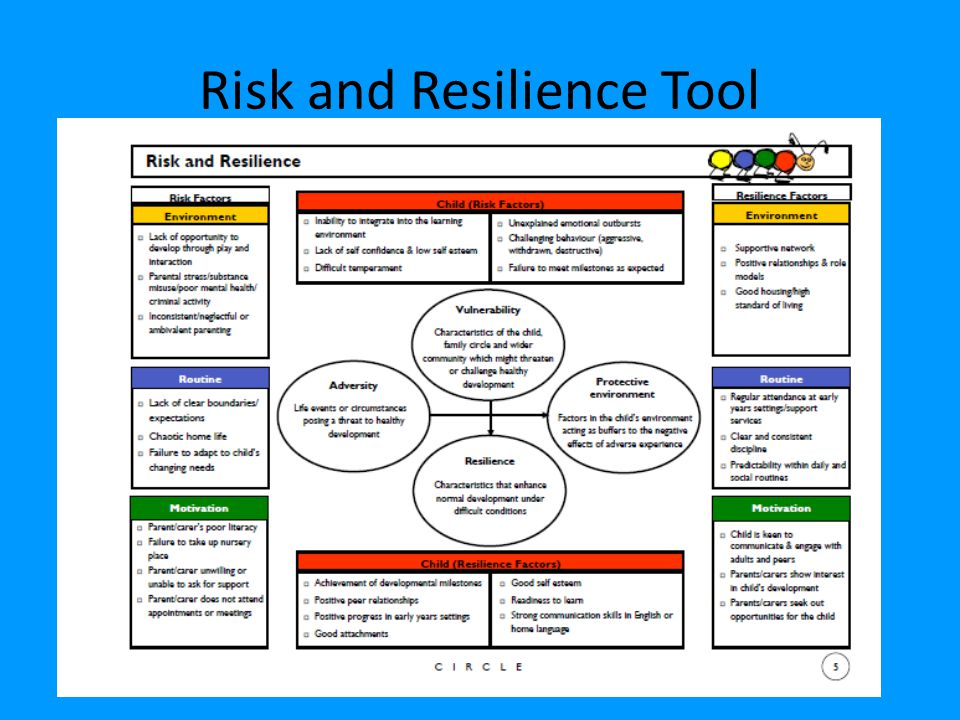 Risk and Resilience Tool