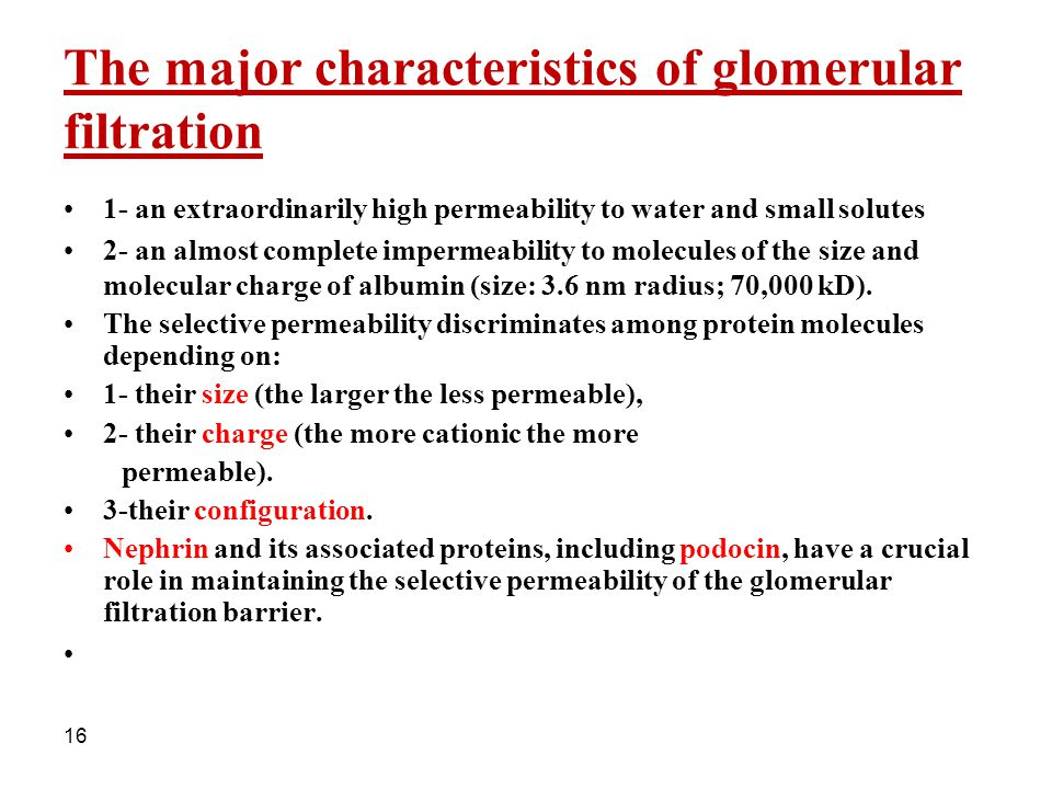 The major characteristics of glomerular filtration