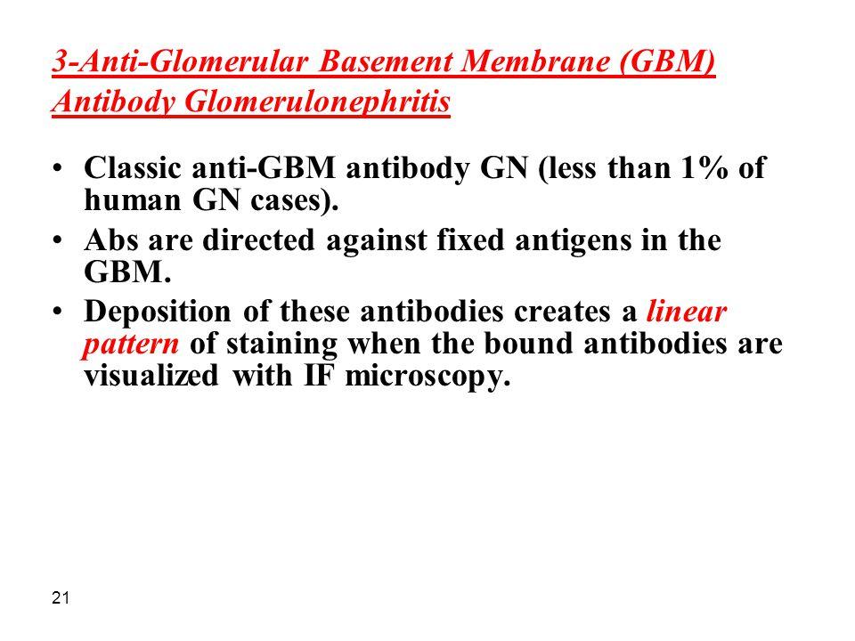 3-Anti-Glomerular Basement Membrane (GBM) Antibody Glomerulonephritis