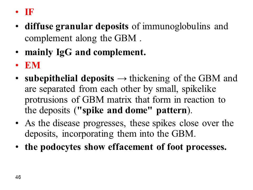 IF diffuse granular deposits of immunoglobulins and complement along the GBM . mainly IgG and complement.