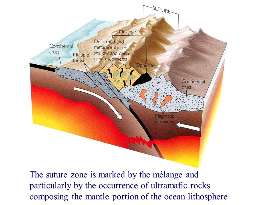 The suture zone is marked by the mélange and particularly by the occurrence of ultramafic rocks composing the mantle portion of the ocean lithosphere