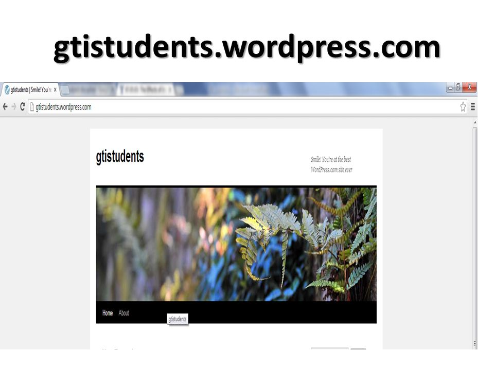 gtistudents.wordpress.com