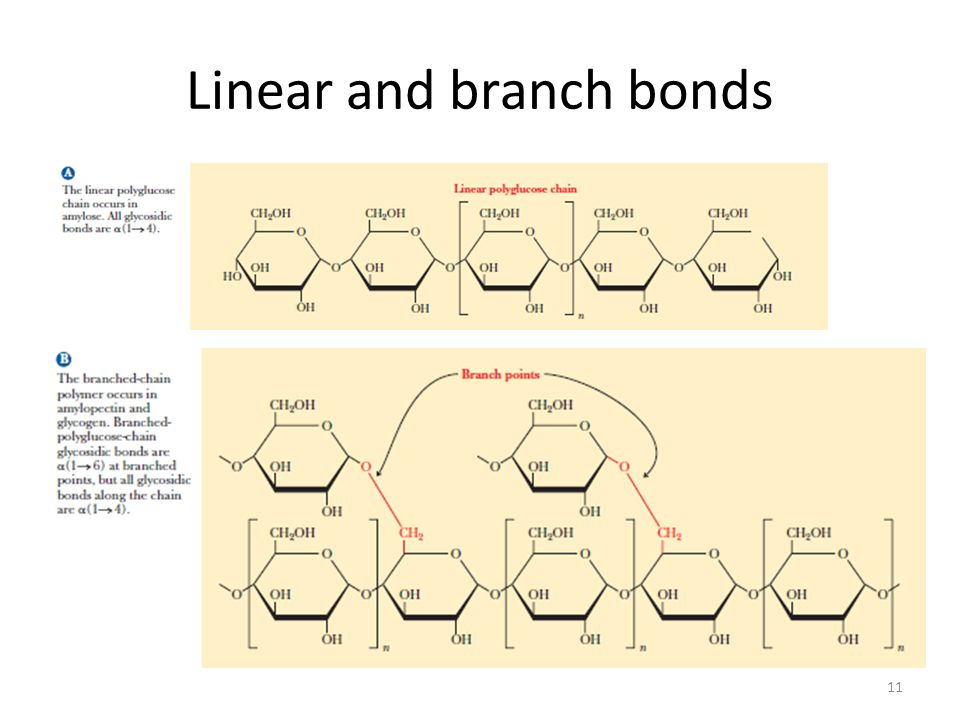 Linear and branch bonds