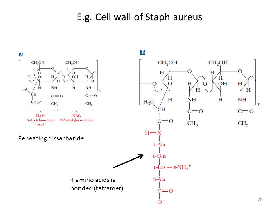 E.g. Cell wall of Staph aureus
