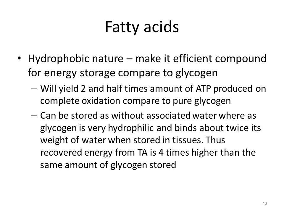 Fatty acids Hydrophobic nature – make it efficient compound for energy storage compare to glycogen.