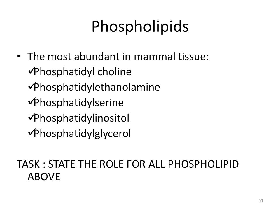 Phospholipids The most abundant in mammal tissue: Phosphatidyl choline