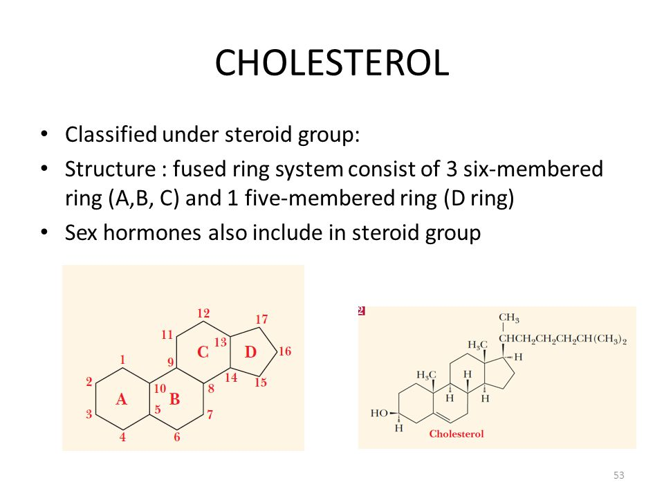 CHOLESTEROL Classified under steroid group:
