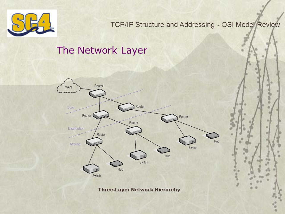 Three-Layer Network Hierarchy