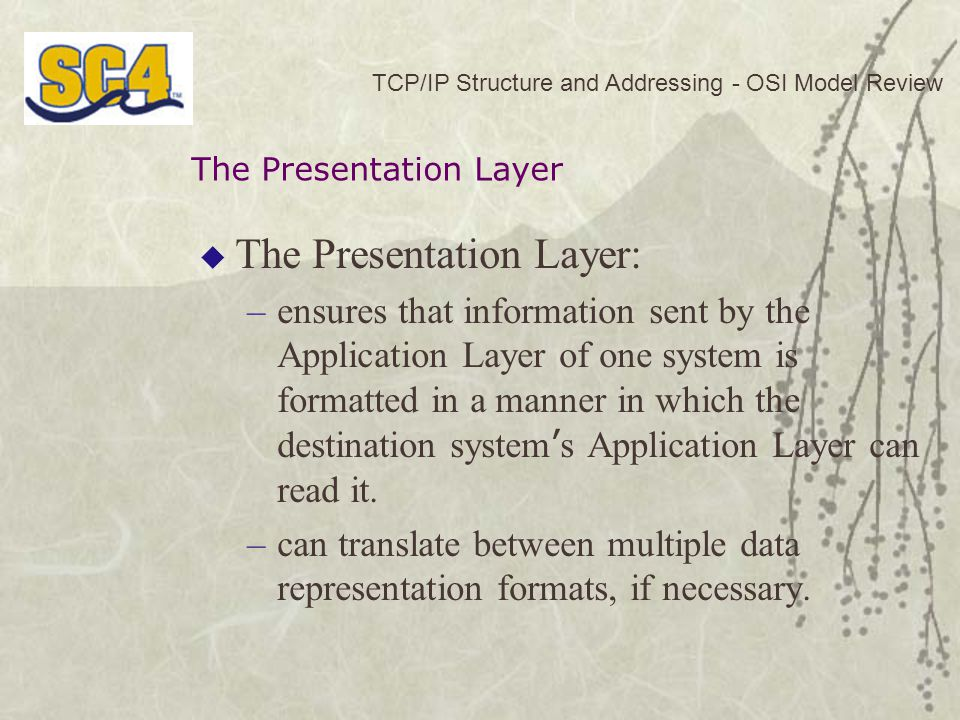 The Presentation Layer: