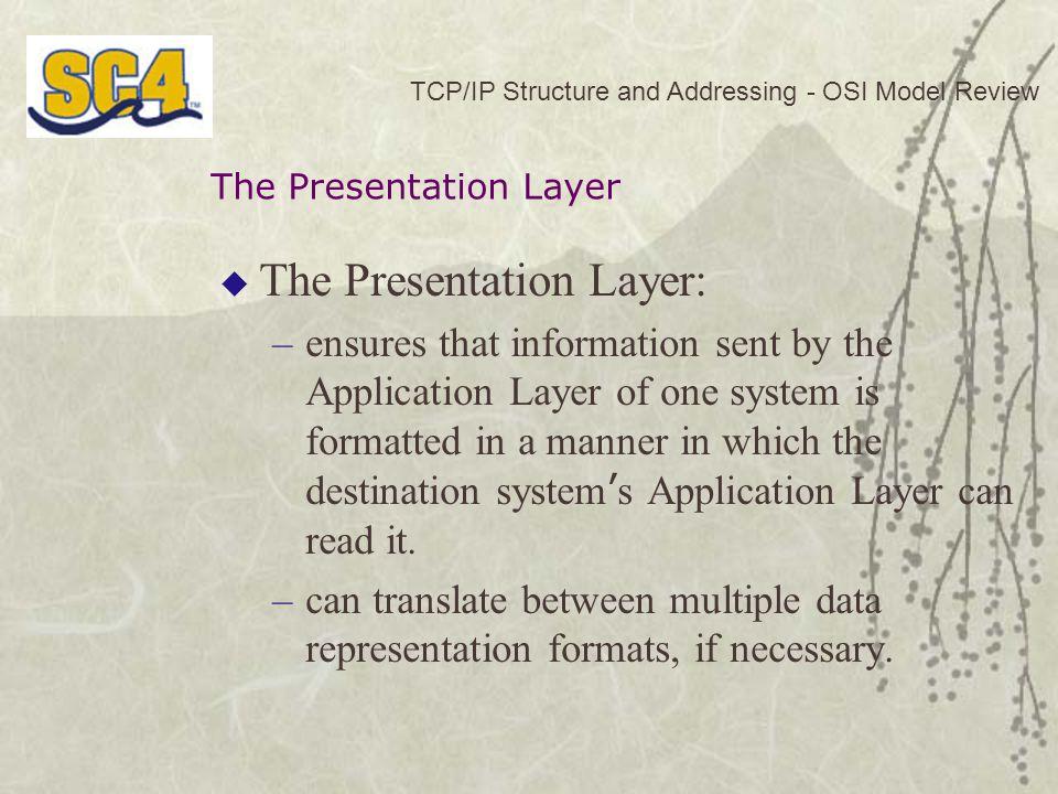 The Presentation Layer: