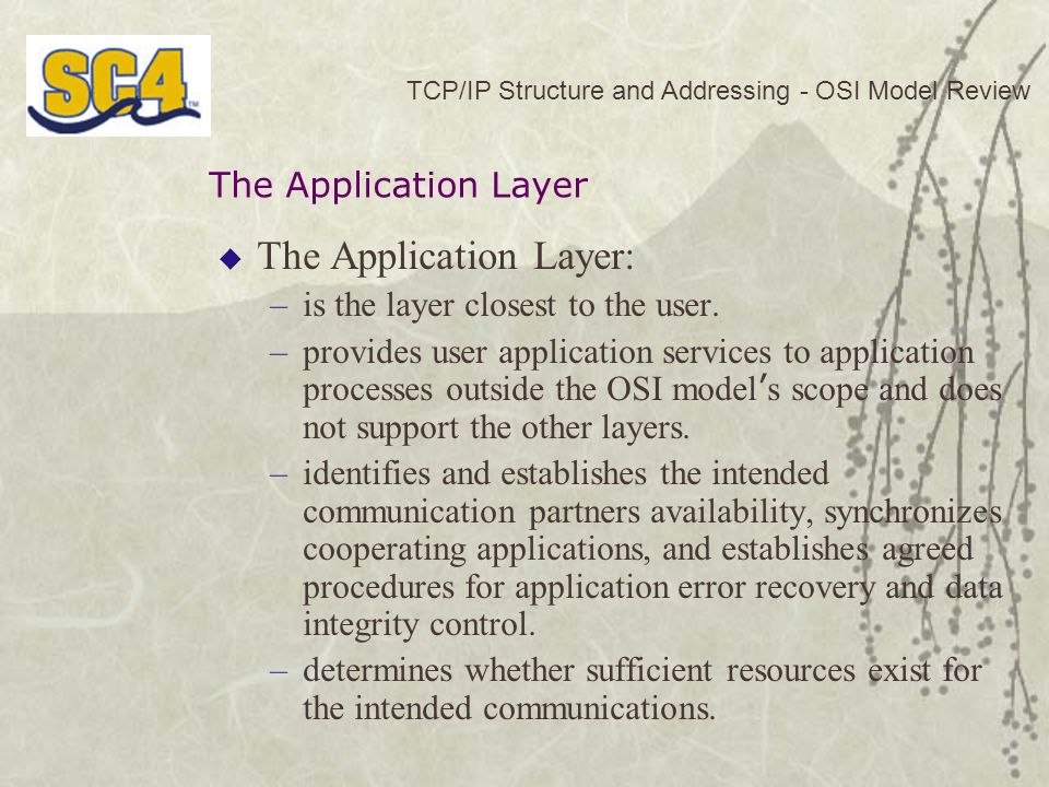 The Application Layer: