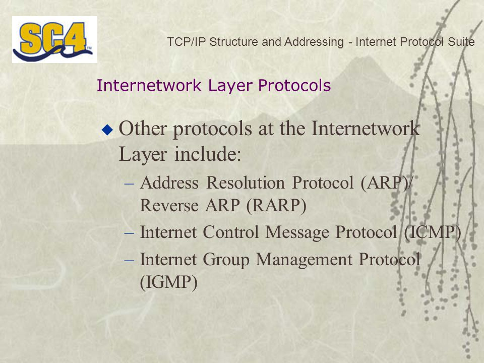Other protocols at the Internetwork Layer include: