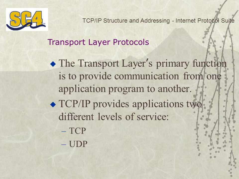 TCP/IP provides applications two different levels of service: