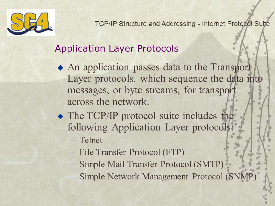 TCP/IP Structure and Addressing - Internet Protocol Suite