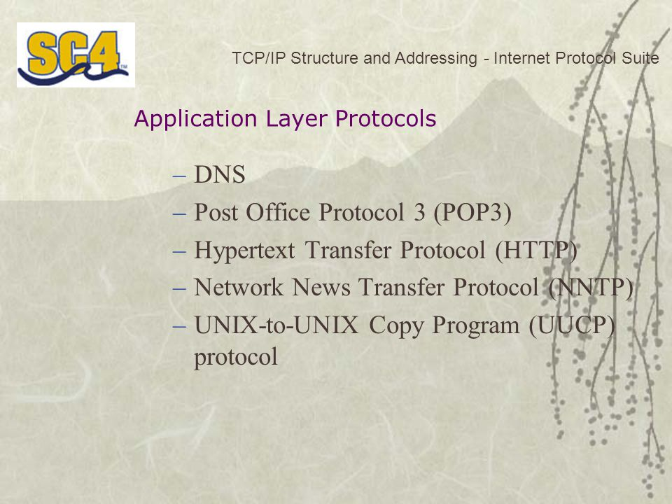 Post Office Protocol 3 (POP3) Hypertext Transfer Protocol (HTTP)