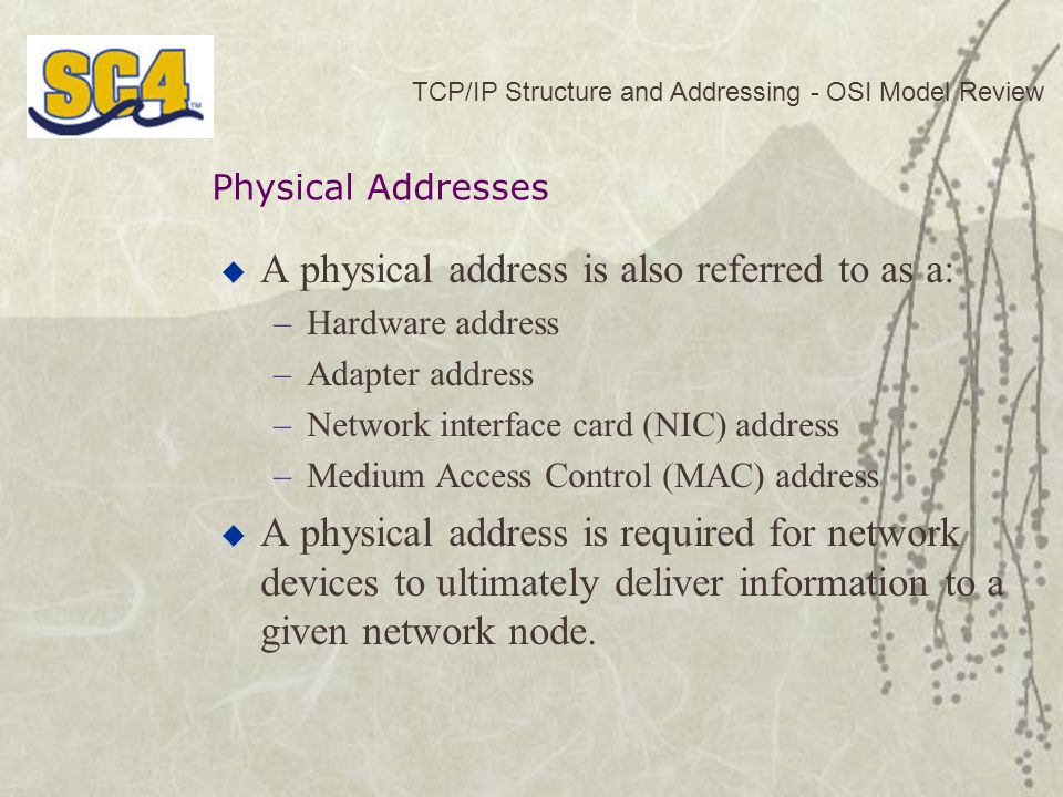 A physical address is also referred to as a: