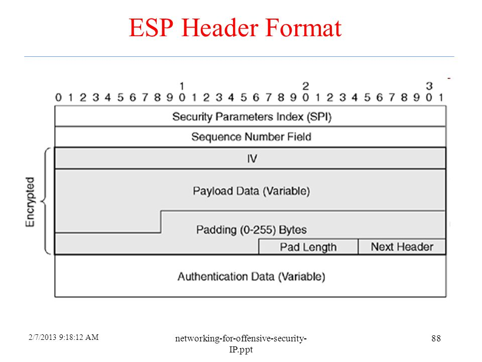 ESP Header Format networking-for-offensive-security-IP.ppt 4/6/2017