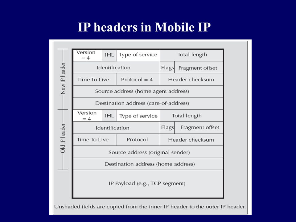IP headers in Mobile IP