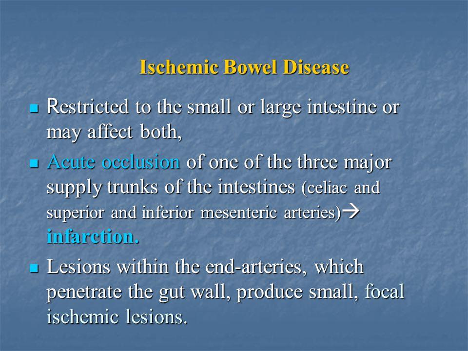 Ischemic Bowel Disease