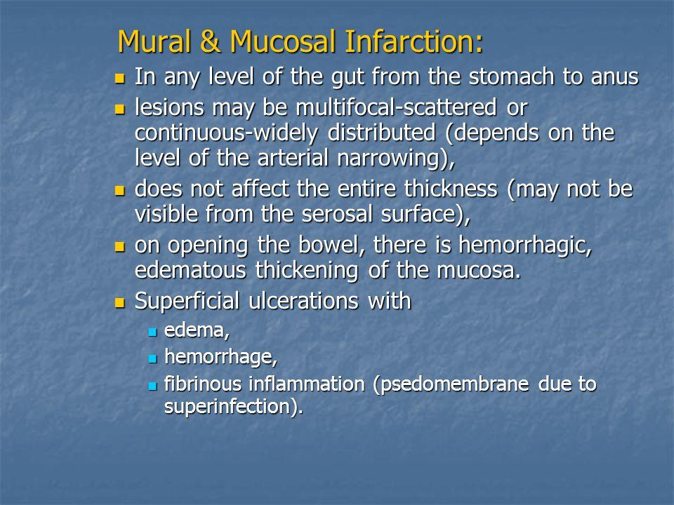 Mural & Mucosal Infarction: