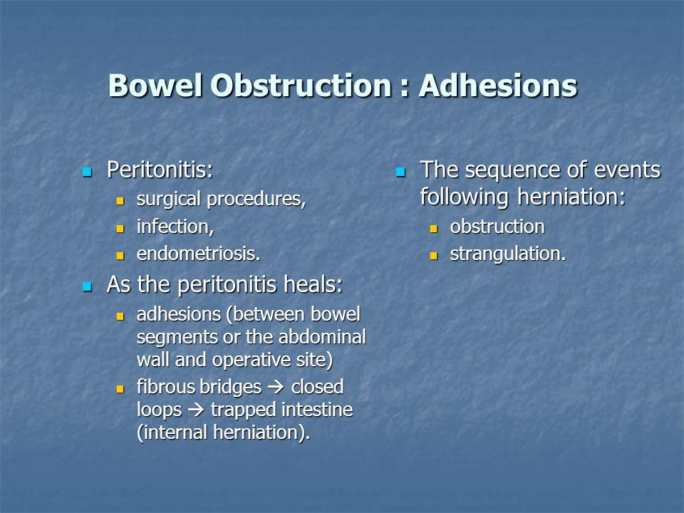 Bowel Obstruction : Adhesions