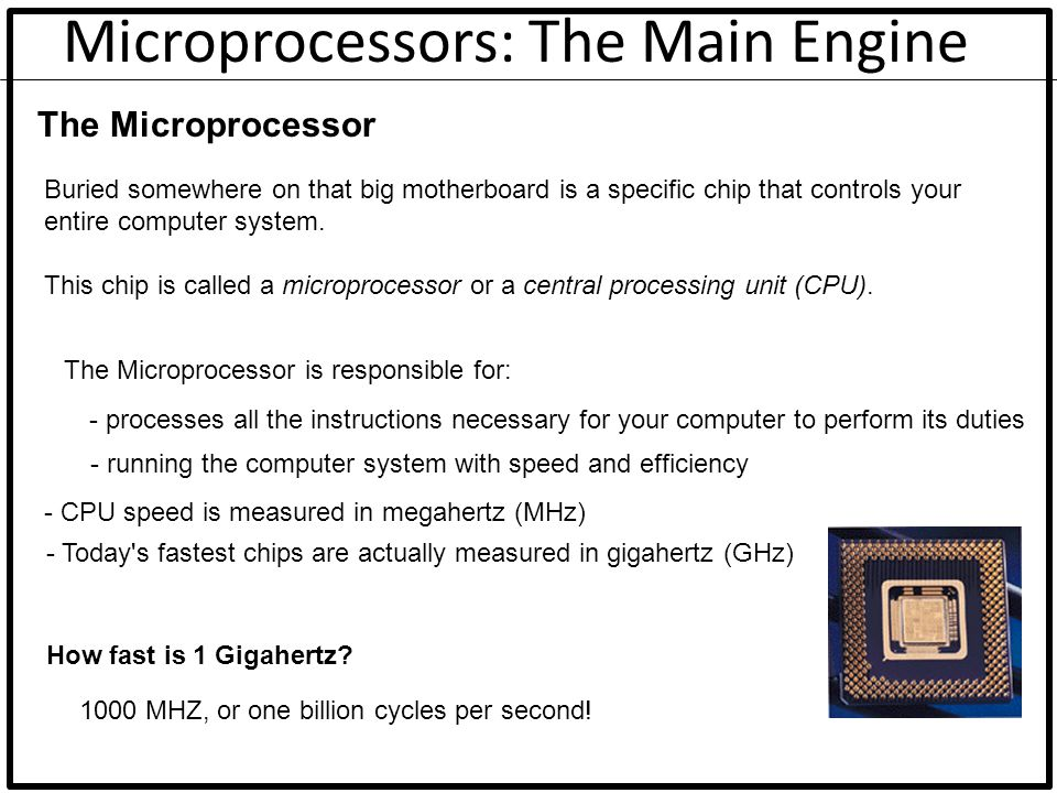 Microprocessors: The Main Engine