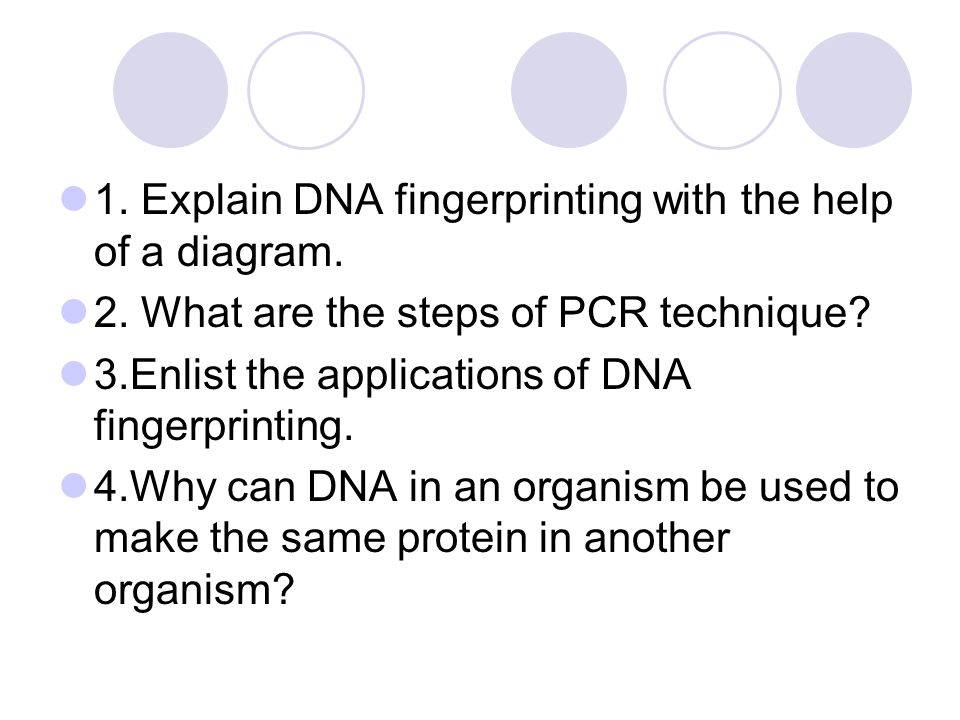 1. Explain DNA fingerprinting with the help of a diagram.
