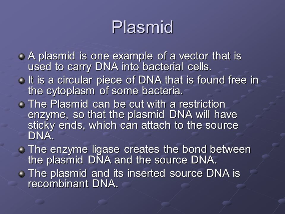 Plasmid A plasmid is one example of a vector that is used to carry DNA into bacterial cells.