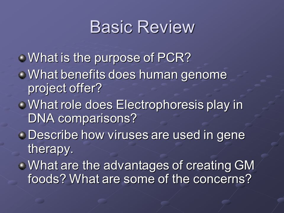 Basic Review What is the purpose of PCR