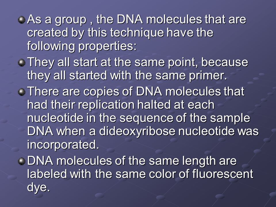 As a group , the DNA molecules that are created by this technique have the following properties: