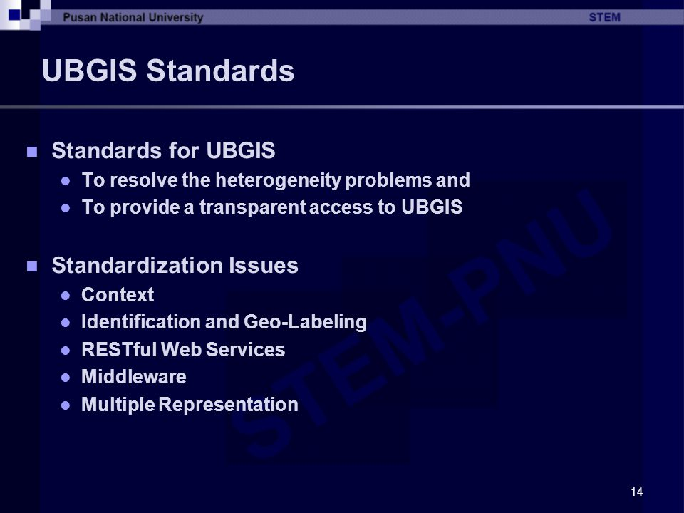 UBGIS Standards Standards for UBGIS Standardization Issues