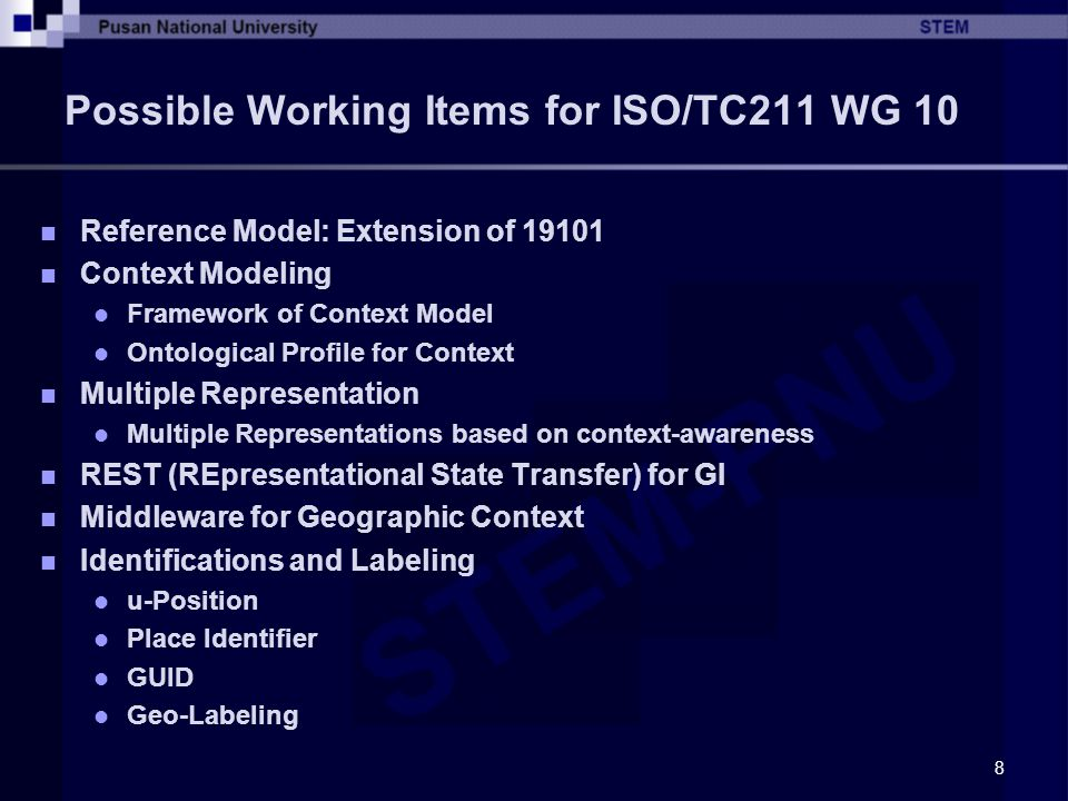 Possible Working Items for ISO/TC211 WG 10