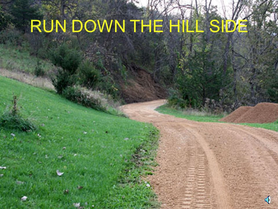 RUN DOWN THE HILL SIDE