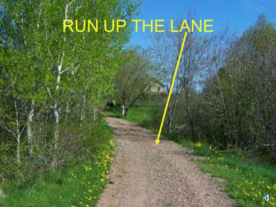 RUN UP THE LANE