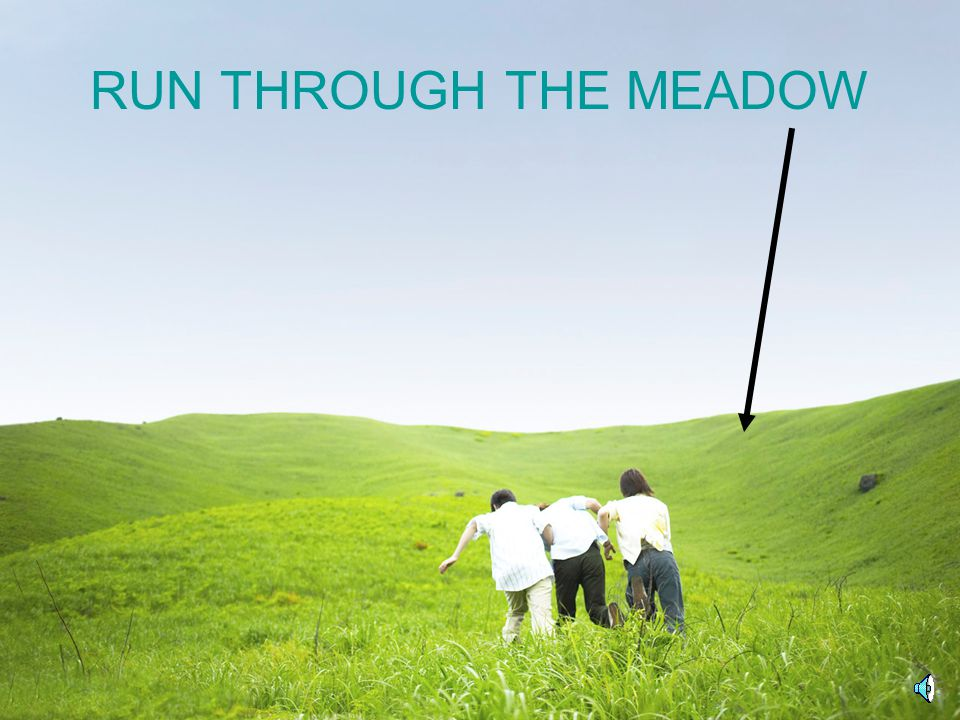 RUN THROUGH THE MEADOW
