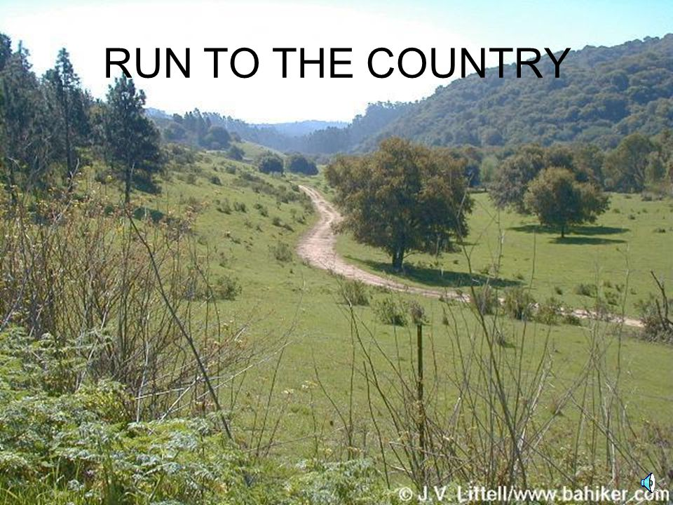 RUN TO THE COUNTRY