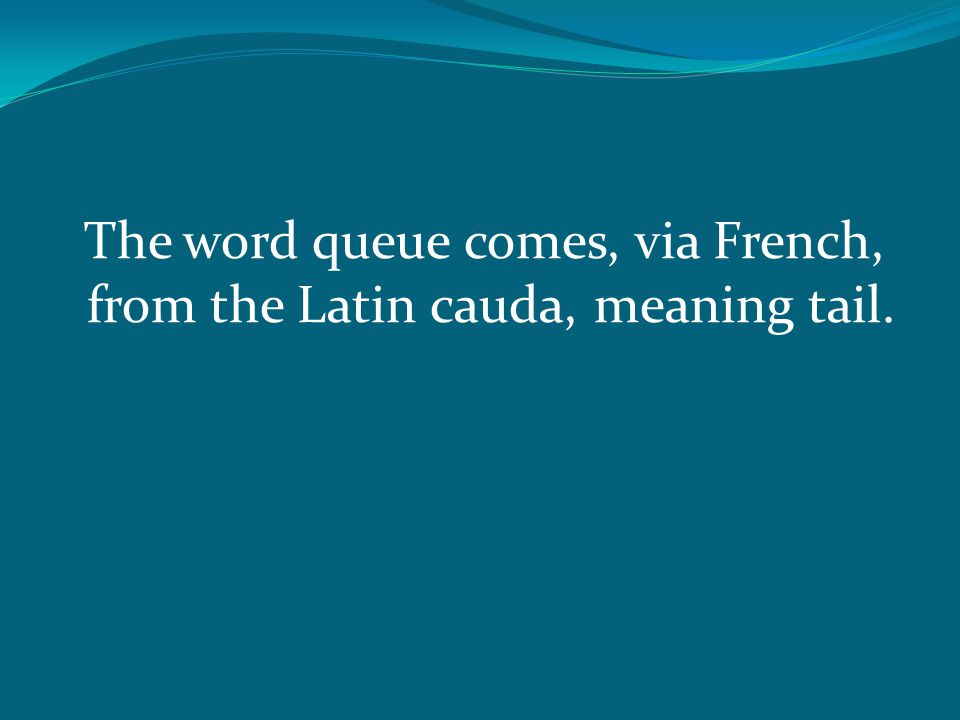 The word queue comes, via French, from the Latin cauda, meaning tail.